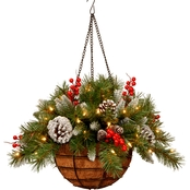 National Tree Company 20 In. Frosted Berry Hanging Basket