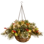 National Tree Company 20 In. Wintry Pine Hanging Basket