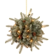 National Tree Company 12 In. Frosted Arctic Spruce Kissing Ball
