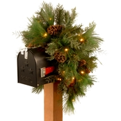 National Tree Company 36 In. Decorative Collection White Pine Mailbox Swag