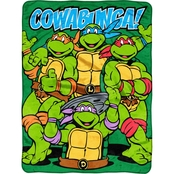 Northwest Teenage Mutant Ninja Turtles Cowabunga Dudes Micro Raschel Throw Blanket