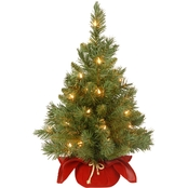 National Tree Co. 24 In. Majestic Fir Tree in Burgundy Bag with Clear Lights