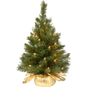 National Tree Co. 24 In. Majestic Fir Tree in Gold Bag with Clear Lights