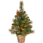 National Tree Co. 2 Ft. Crestwood Spruce Tree with Clear Lights