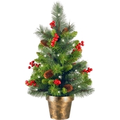 National Tree Co. 2 Ft. Crestwood Spruce Tree with Battery Operated White LEDs