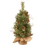 National Tree Co. 2 Ft. Glistening Pine Tree with Battery Operated White LED Lights