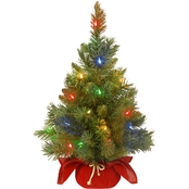 National Tree Co. 24 In. Majestic Fir Tree with Battery Operated Multicolor LED