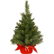 National Tree Co. 24 In. Majestic Fir Tree