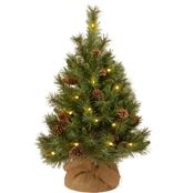 National Tree Co. 30 In. Pine Cone Tree with Battery Operated Warm White LED Lights