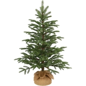 National Tree Co. 3 Ft. Norwegian Seedling Tree