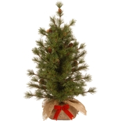 National Tree Co. 3 Ft. Bristle Cone Pine Tree