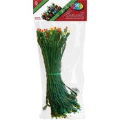 National Tree Company 50 Multicolor Concave LED Bulb Light String Set