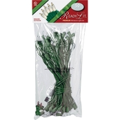 National Tree Company Ready-Lit Premium 50 Clear Bulb Light String Set