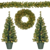 National Tree Co. Promotional Assortment with Battery Operated LED Lights