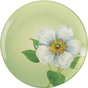 Noritake Colorwave Apple Floral Accent Plate