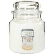 Yankee Candle Early Spring Bloom 14.5 Oz. Jar