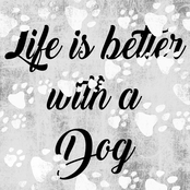 PTM Images Life is Better with a Dog Decorative Canvas Print Wall Art