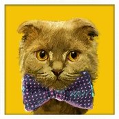 PTM Images Cat with Bowtie II Decorative Framed Art