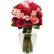 Designers Choice 24 Stem Rose Bouquet