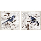 PTM Images Vintage Birds Decorative Frame Art Set of 2