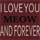 PTM Images I Love You Meow Decorative Plaque Wall Art