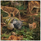 Wild Wings Forest Prowler Fabric by the Yard