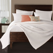 Lamont Limited Delaney Coverlet