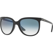 Ray-Ban Injected Crystal Cat Eye Gradient Sunglasses 0RB4126