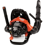 Echo 25.4cc Backpack Blower with i-30 Starter