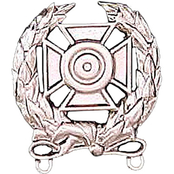 Army Badge, Regular Mirror Finish, Expert Shooting