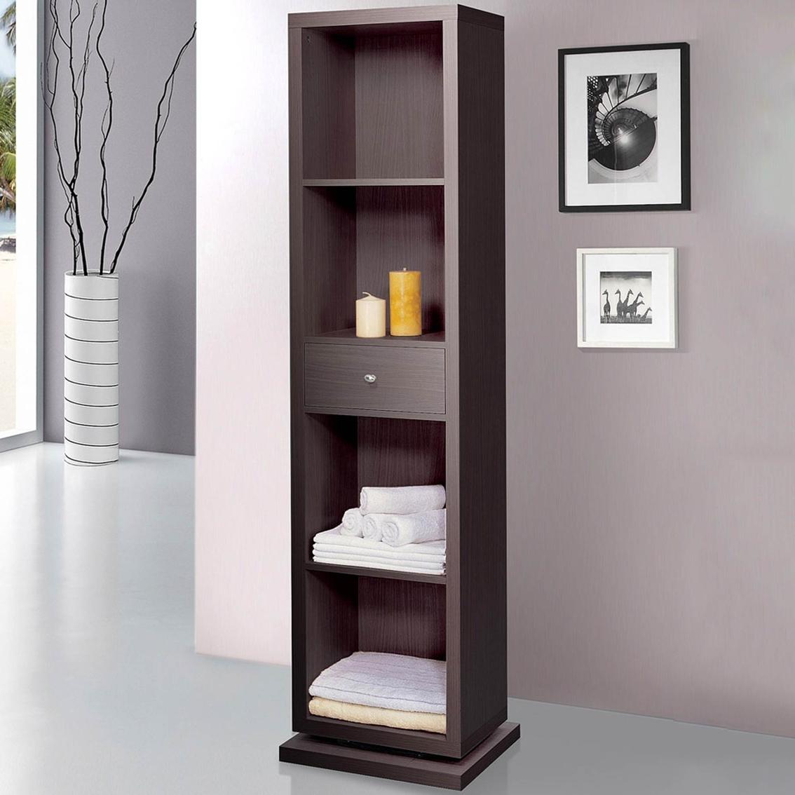 Swivel Mirror Bookcase Home Design Ideas