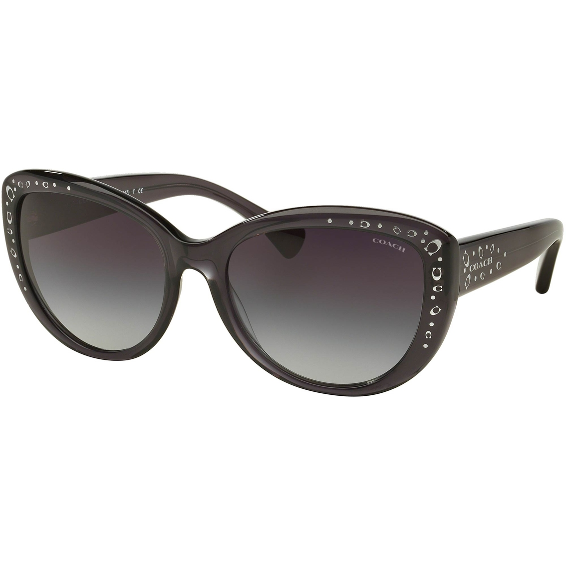 36e21aa63341 Coach Sunglasses 0hc8162 | Women's Sunglasses | Handbags ...