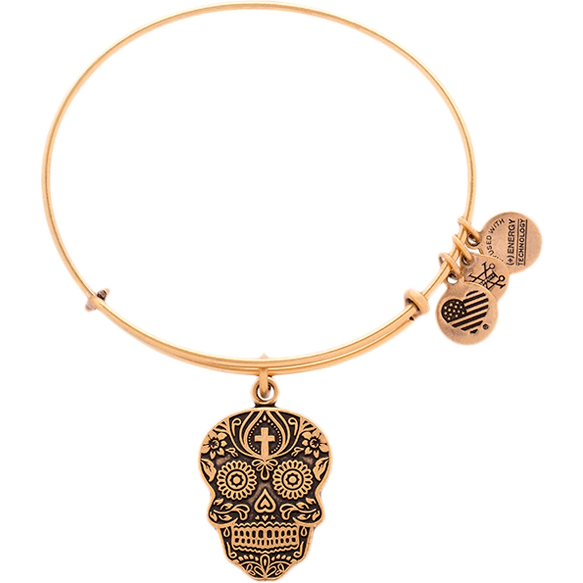 Alex And Ani Calavera Charm Bangle Fashion Bracelets Jewelry