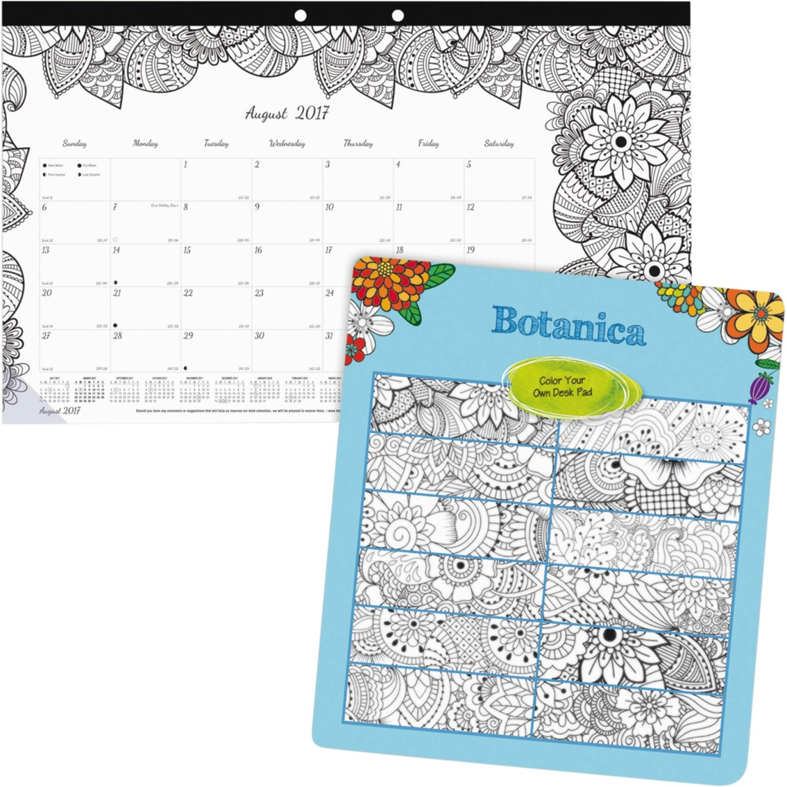Blueline Academic Doodleplan Desk Pad Calendar W/coloring Pages, 17 ...
