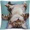 Trademark Fine Art Pat Saunders White Little Napper Decorative Throw Pillow - Image 1 of 3